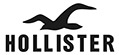 brand 019 hollister brand logos thumbnails images